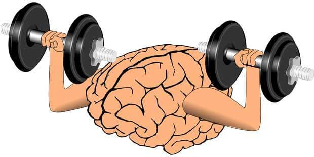 exercice du cerveau