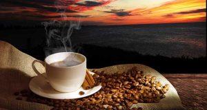 tasse cafe et grain cafe