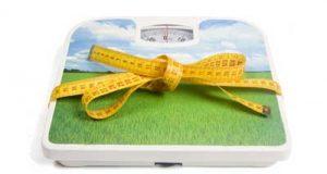 echelle de poids